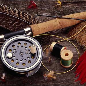 Охотничьи и рыболовные магазины Вытегры